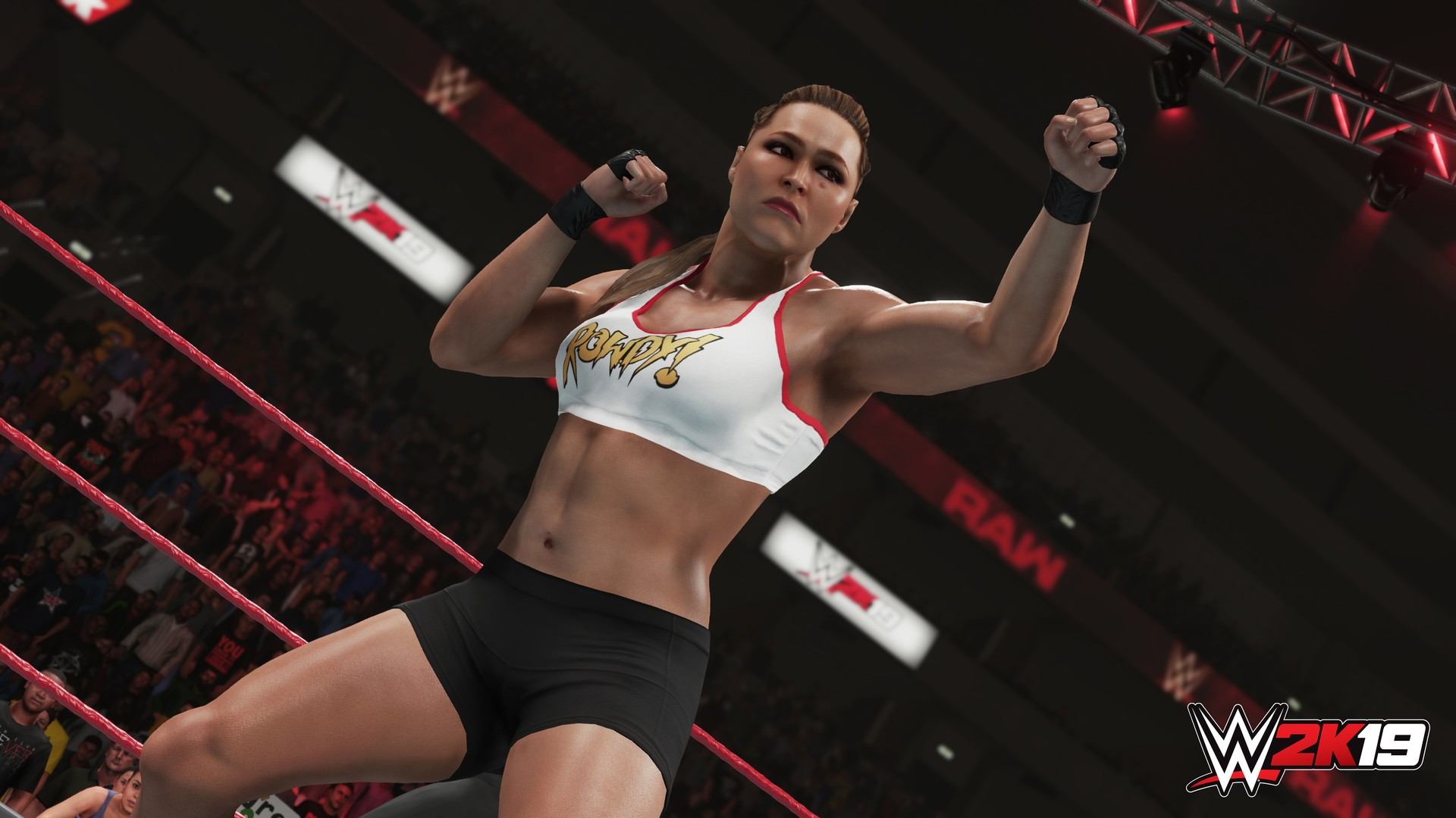 WWE 2K19 s new Towers mode details announced by 2K