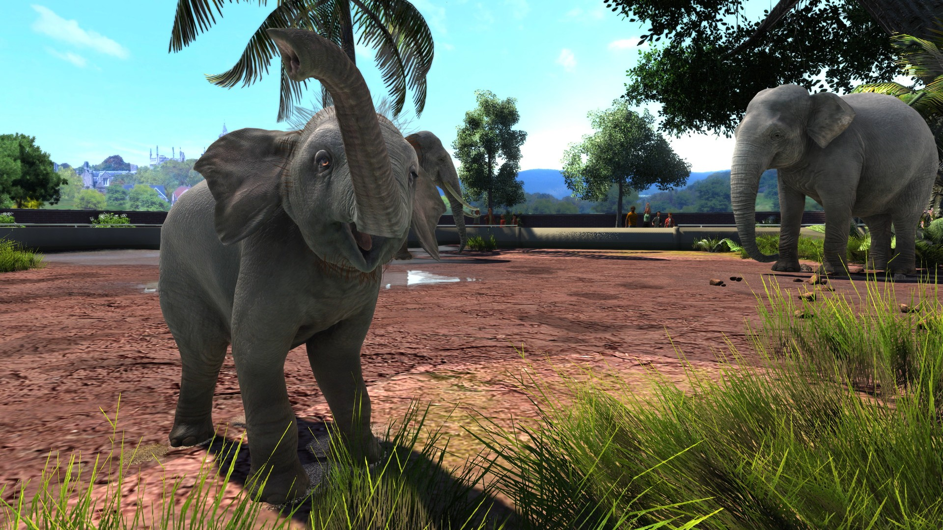 zoo tycoon ultimate collection animal steam animals series