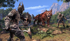 The Elder Scrolls Online: Elsweyr - Standard Edition screenshot 5